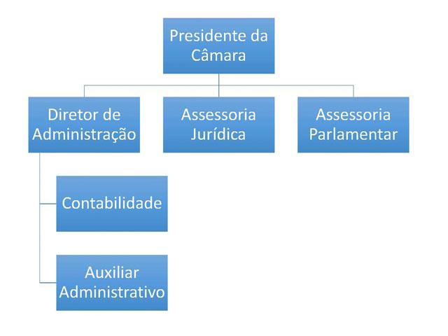 org-camara